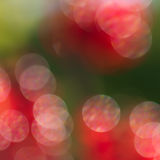 Abstract red and green circular bokeh background Royalty Free Stock Images