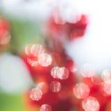 Abstract red and green circular bokeh background Stock Photos