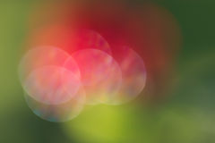 Abstract red and green circular bokeh background Stock Photography
