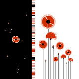 Abstract red poppy on black and white background Royalty Free Stock Photo