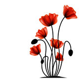 Abstract red poppy Royalty Free Stock Photography