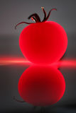 Abstract red tomato. Against a dark background and its reflection Stock Image
