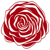 Abstract red and white rose. Royalty Free Stock Photos