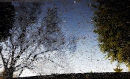 Abstract reflection Stock Photos