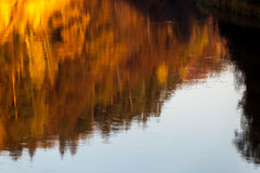 Abstract reflection. Royalty Free Stock Image