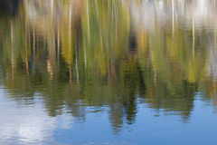Abstract reflection of trees and sky with clouds in the water, b Royalty Free Stock Photography