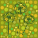Abstract retro illustration with dandelions Royalty Free Stock Image