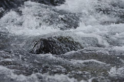 Abstract river Royalty Free Stock Images