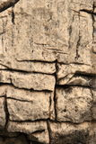 Abstract Rock stock image