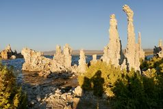 Abstract rock tower. Mono Lake, California Royalty Free Stock Images