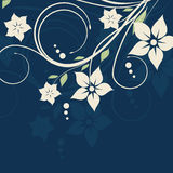 Abstract  romantic  background with floral Stock Photo