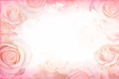 Free Abstract Romantic Rose Horizontal Background. Delicate Design Template For Greeting Cards And Invitations. Stock Photo - 97351660
