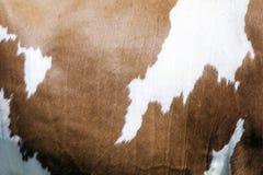 Abstract rood en wit patroon aan kant van koe Stock Afbeeldingen