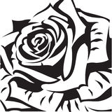 Abstract rose. Abstract black rose on a white background Stock Images