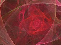 Abstract rose background. Abstract red rose background illustration Royalty Free Stock Images