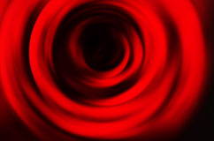 Abstract rose background Royalty Free Stock Images