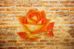 Abstract rose on the brick wallpaper i Stock Photos
