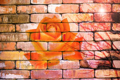 Abstract rose on the brick wallpaper Royalty Free Stock Photos