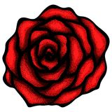 Abstract rose free-hand drawing in a graphic style Royalty Free Stock Images