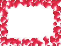 Abstract rose petals Stock Photo