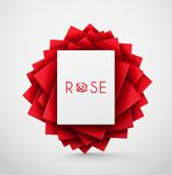 Abstract Rose Royalty Free Stock Photos