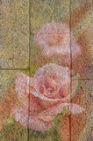 Abstract  rose on stone wall textured background. Royalty Free Stock Photography