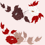 Abstract roses backgroun. Royalty Free Stock Image
