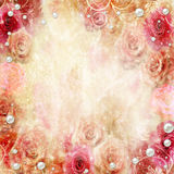 Abstract roses background Stock Image