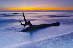 Abstract Rotten log at the beach sunset Royalty Free Stock Photography