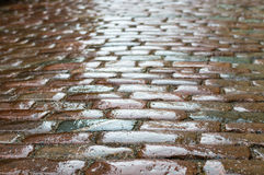 Abstract rough texture of wet block pavement Royalty Free Stock Photo