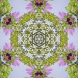 Abstract round flower wreath with yarrow mallow leaves and buds. Abstract multicolored background centered. Regular round and symmetric flower ornament, pink Stock Images
