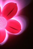 Abstract roze bloemlicht tegen zwarte backgroun Stock Foto