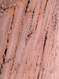 Abstract - rusted metal plates Royalty Free Stock Photography