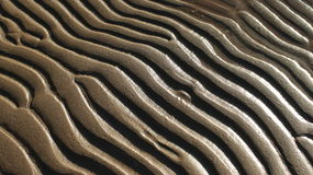 Abstract sand pattern Royalty Free Stock Image