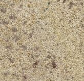 Abstract sandstone structure Stock Photo