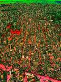 Abstract Sao Paulo in rood en groen, Digitaal Art. stock illustratie