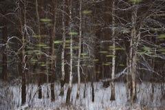 Abstract schilderlandschap Royalty-vrije Stock Afbeelding