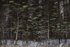 Abstract schilderlandschap Royalty-vrije Stock Afbeeldingen