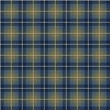 Abstract scottish plaid Royalty Free Stock Image