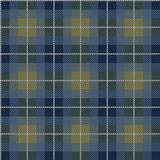 Abstract scottish plaid Royalty Free Stock Photo