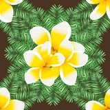 Abstract  seamless background with palm leaves and flowers plumeria. Royalty Free Stock Photo
