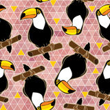 Abstract seamless  background with toucans. Royalty Free Stock Photos