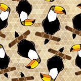 Abstract seamless  background with toucans. Stock Image