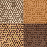 Abstract seamless backgrounds of the skin Royalty Free Stock Image