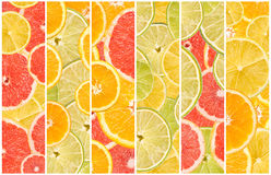 Abstract Seamless Collage Of Citrus Fruits Stock Photos
