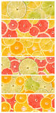 Abstract Seamless Collage Of Citrus Fruits Royalty Free Stock Images