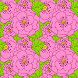 Abstract seamless doodle pattern with flowers Royalty Free Stock Photos