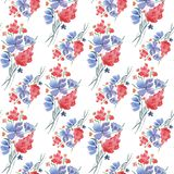 Abstract seamless  floral pattern.Cute red, blue meadow flowers on white background. Royalty Free Stock Photography