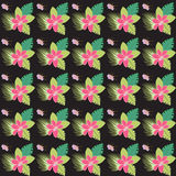 Abstract seamless floral tropical pattern multicolor background Royalty Free Stock Image