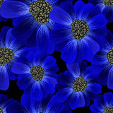 Abstract seamless hand painted background. Isolated blue flowers Royalty Free Stock Photography